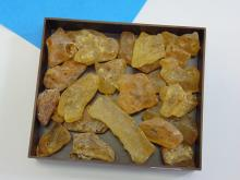 Lot of Amber Nuggets Natural Mineral Specimens