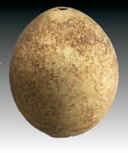 Early Bronze Age Ostrich Egg Vessel, circa 2700-2100 BC. A Biblical era artifact