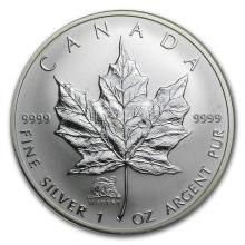 2004 Canada 1 oz Silver Maple Leaf Lunar MONKEY Privy #22002v3