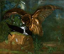 Eagle Owl and Magpie , 1747