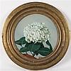 Etienne Adrien DRIAN (1885-1961) L'Hortensia blanc Fixé sous verre signé en bas au milieu Ø 32 cm