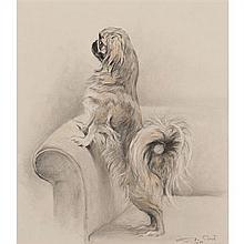Xavier de Poret (1897-1975)Pekinois dressé sur un accoudoirCrayons de couleurs et crayon noir, gommage47 × 41,5 cmSigné et daté de 1...
