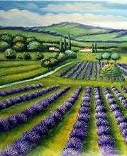 Fields - Original Oil on Canvas