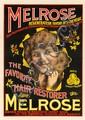 Melrose / The Favorite Hair Restorer.