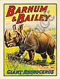 Barnum & Bailey / Giant Rhinoceros. 1909