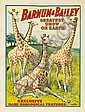 Barnum & Bailey / Rare Zoological Features. 1909