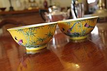 Pair Of Chinese Porcelain Bowl Highly Decorated Wi