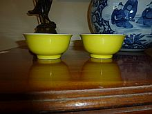Pair Of Rare Yellow Chinese Bowls. Marks TO Base.