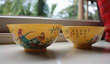 Pair Of Chinese Bowls Highly Decorated With Exotic