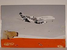 Tony SOULIE 'A380 hot weather campaign - Al Ain - United Arab Emirates