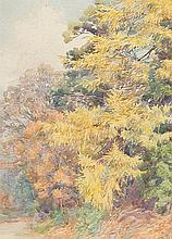 Larch Trees November watercolour signed lower right titled lower left