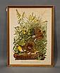 James John Audubon Print, water damage