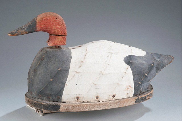 Canvasback  Decoy