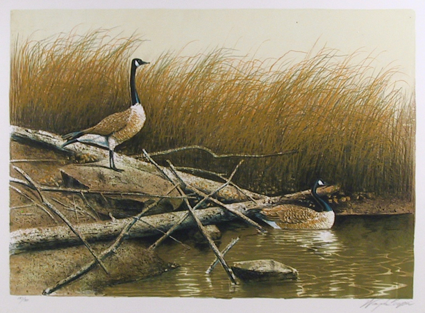 Wayne Cooper, Willow Slew, Lithograph
