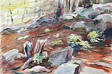 Eve Nethercott, Forest Floor (P1.27), Watercolor Painting