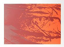 Marie Lunden, Red Orange Abstract, Serigraph