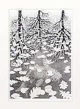 M.C. Escher, Three Worlds, Lithograph