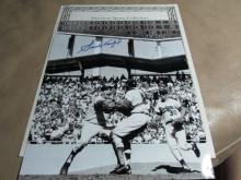 Sandy Koufax Autographed Photo Display