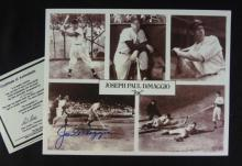 Joe Dimaggio Autographed Photo COA