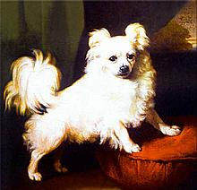 Ceramic Tile of Painting of Pomeranian Dog