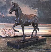 Noble Equestrian Horse~ Bronze Sculpture