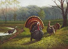 5 x 7 Oil on Board ~Turkeys in Forest~ Signed