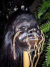 Professional Movie Prop Shrunken Head
