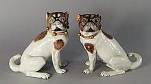 A pair of Dresden porcelain pugs, 20th century, ea