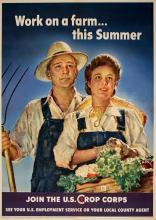 WORK ON A FARM THIS SUMMER ORIGINAL VINTAGE POSTER WORLD WAR II