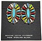Navajo Multi-Stone Cluster Sterling Silver Post Earrings - Davina Benally