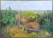 LOUISE COOK - Untitled - Prairie and Woods