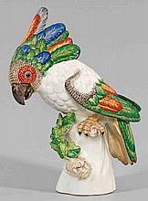 Kakadu mit geschlossenen Flügeln. Originaltitel