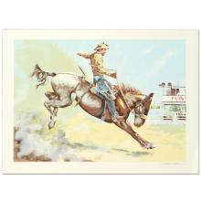 Bronco Buster by Nelson, William