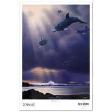 Dolphin Flight by William Schimmel