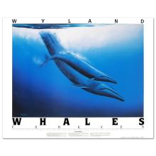 Blue Whales by Wyland