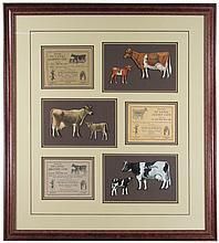Three DeLaval Souvenir Tin Die Cut Cows
