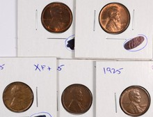 (5) 1925 LINCOLN CENTS