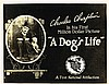CHARLIE CHAPLIN FULL SET OF 'A DOG'S LIFE' LOBBY CARDS.