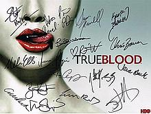TRUE BLOOD CAST SIGNED 24X12 INCHES PHOTO