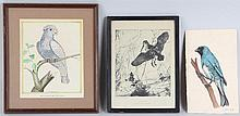 Group of (3) works on paper depicting birds