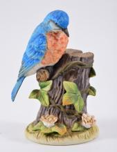 Gorham Eastern Bluebird