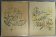 Rene Hunt, a pair of prints, depicting toucans.