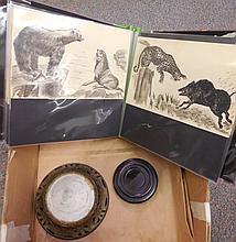 Sweet little album - animal drawings