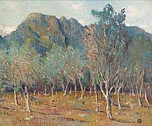 Nita (Pauline Augusta Wilhelmina) Spilhaus, Orchard Beneath Cape Mountains