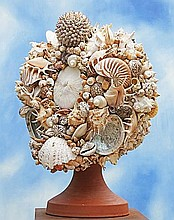 A Display of Shells & Coral Modern 76cm.; 30ins