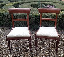 A PAIR OF REGENCY PERIOD MAHOGANY BAR BACK DINING CHAIRS