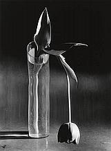 KERTÉSZ, ANDRÉ (1894-1985)