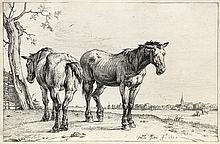 PAULUS POTTER The Plough Horse.