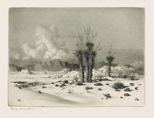 GEORGE ELBERT BURR Two etchings of Arizona.