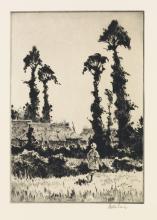 MARTIN LEWIS Trees at Gotemba.